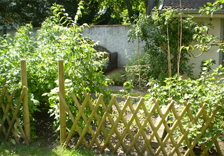 Profiter de  son jardin